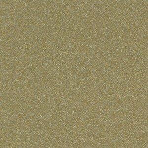 P204591 - Single Stage Beige Met Paint