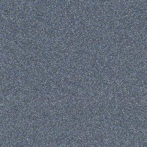 P34364 - Single Stage Silver Met Paint
