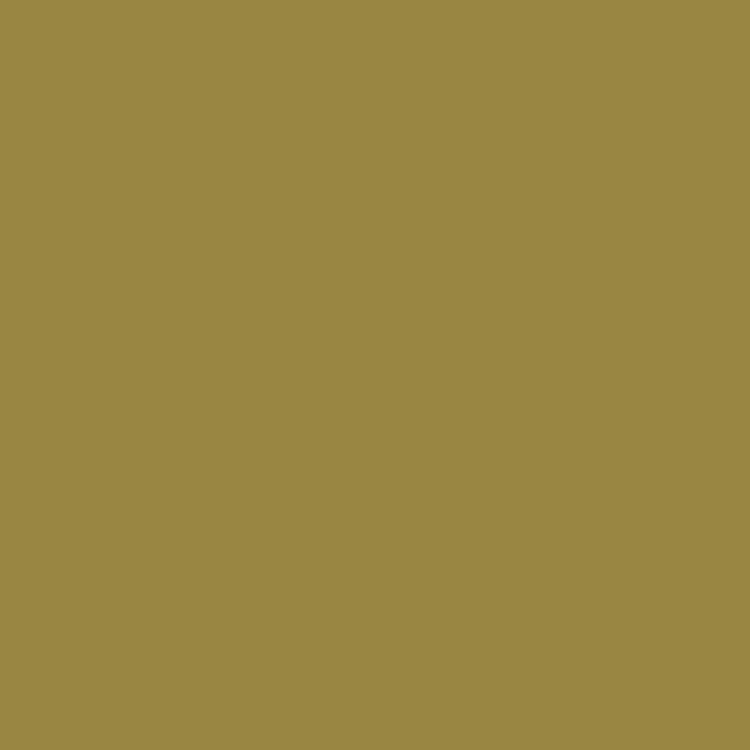 Product RAL 1020 - Olive Yellow
