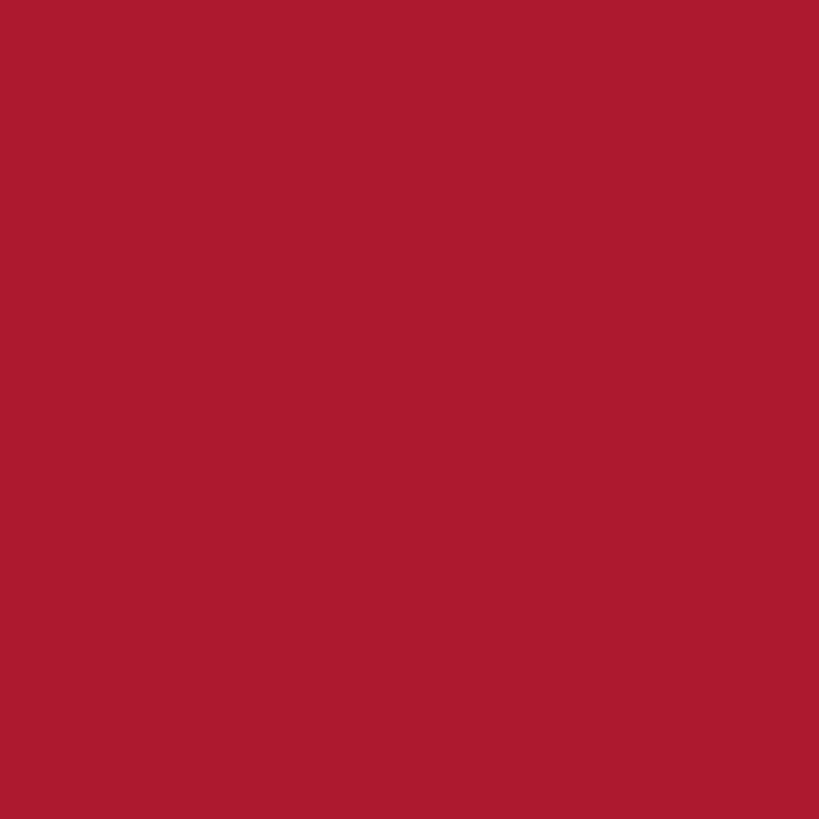 Product RAL 3002 - Carmine Red