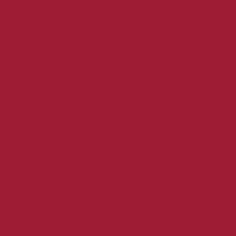Product RAL 3031 - Orient Red