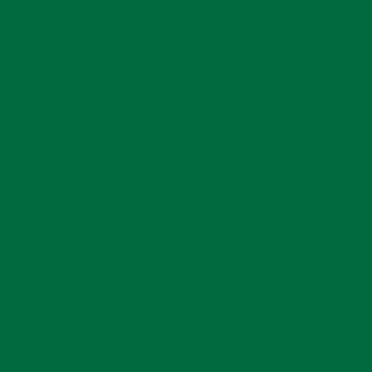 Product RAL 6010 - Grass Green
