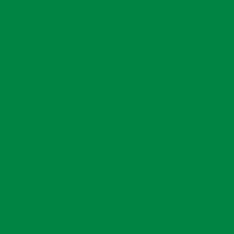 Product RAL 6024 - Traffic Green