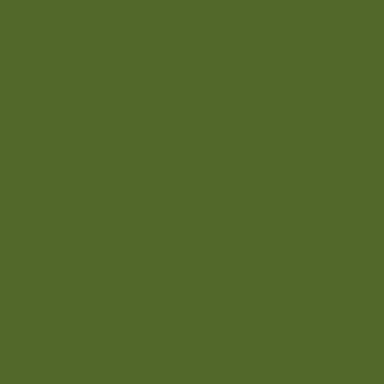 Product RAL 6025 - Fern Green