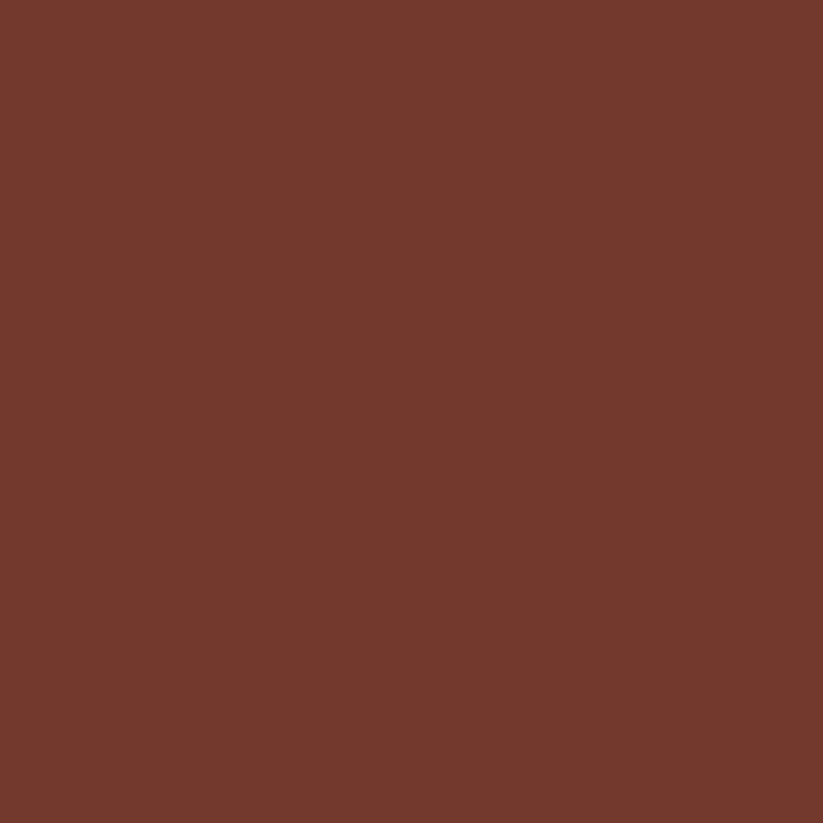 Product RAL 8012 - Red Brown