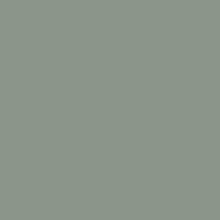 Product P303769 - Single Stage Gray Paint