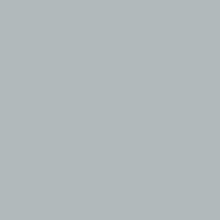 Product P303766 - Single Stage Twilight Gray Paint